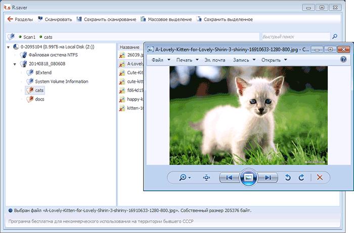 Предварительный просмотр найденных файлов