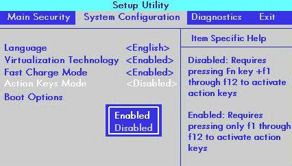 Настройки клавиши Fn в биосе ноутбука HP