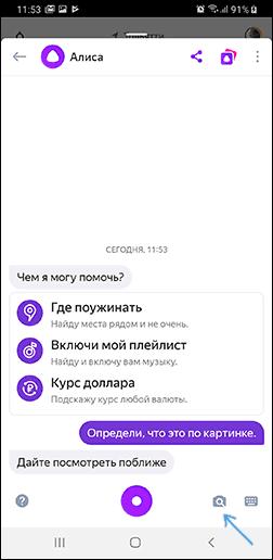 Поиск по фото с телефона в Яндекс Алисе